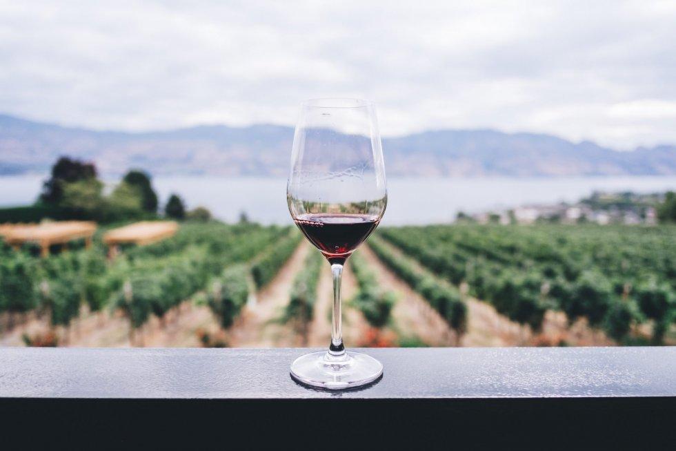 Bästa Röda viner 2018